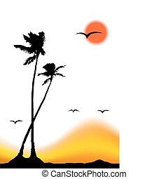 Ocaso tropical, silueta de palmera