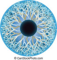 Ojo humano azul, vector