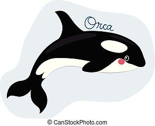 orca, divertido, orca