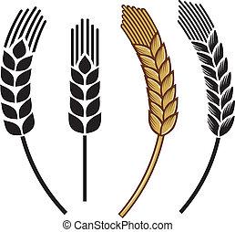 oreja, conjunto, trigo, icono