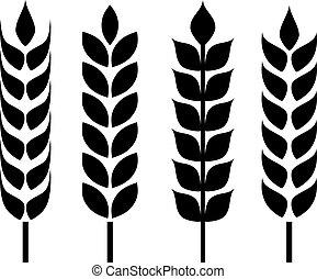 oreja, trigo, icono