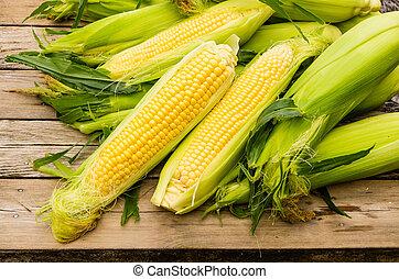Orejas de dulce maíz amarillo