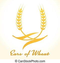 Orejas de trigo o icono de arroz. Crop, cebada o símbolo de centeno aislado en el fondo blanco. Diseño para etiqueta de cerveza o empaque de pan. Ilustración de vectores.