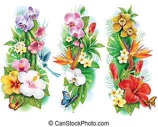 Organización de flores tropicales y hojas