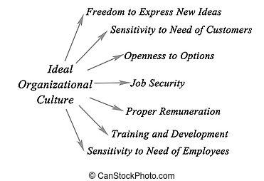 organizativo, cultura, ideal