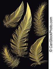 oro, dibujos, vector, plumas
