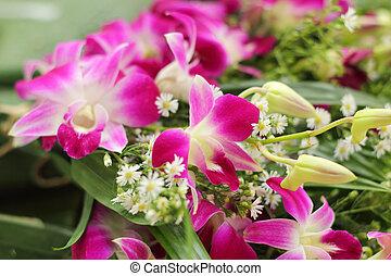 Orquídea rosa en el mercado
