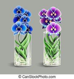 Orquídea Vanda en un jarrón de cristal. Flor tropical de epifito. Elemento de decoración casera. El símbolo del crecimiento y la ecología.