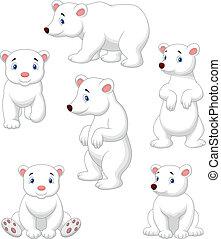 oso, polar, lindo, colección, caricatura