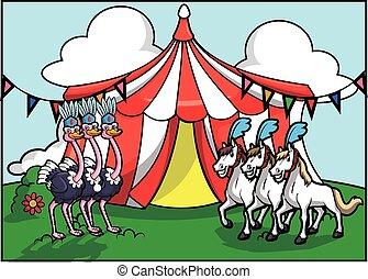 Ostritch y el circo de caballos blancos