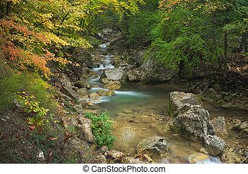 otoño, flow., riachuelo
