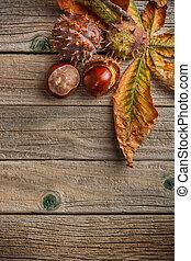 otoño, fresco, hojas, castañas