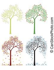 Otoño, invierno, primavera, árbol de verano