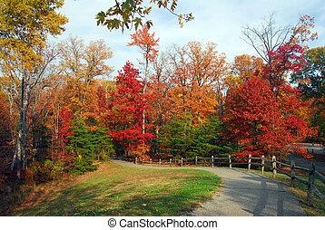 otoño, maryland