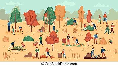 otoño, plano de fondo, cobrar, vegetales, trabajo, agrícola, season., berries., plantación, fruits, granjeros, amontonar, heno, vector, cosecha