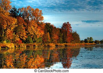 otoño, puerto, hdr, bosque
