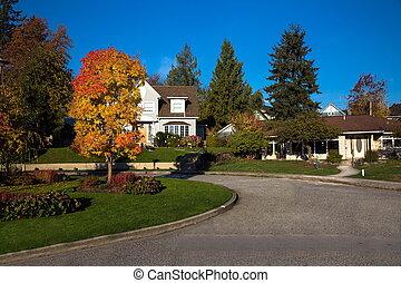 otoño, tiempo, vecindad, residencial