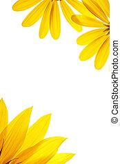Página blanca en blanco decorada con detalles naturales de girasol.