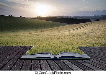 Páginas conceptuales creativas del libro Hermoso paisaje de verano del campo de cultivo de trigo durante el atardecer