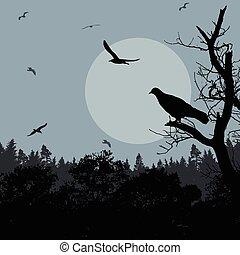 Pájaro en rama en la noche azul