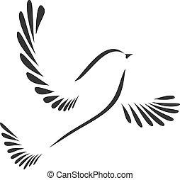 Pájaro o paloma