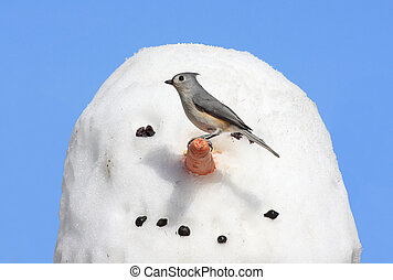 pájaro, snowman
