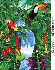 pájaro, tropical