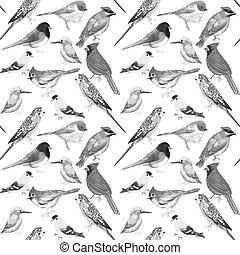 Pájaros blancos y negros contra obras de arte sin costura