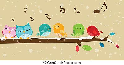 Pájaros cantando en la rama