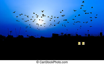 Pájaros con luna llena sobre los tejados de la ciudad