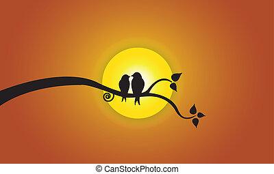 Pájaros de amor, luna de noche, sol del cielo