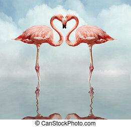 Pájaros de amor