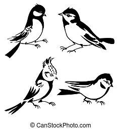 Pájaros siluetas de fondo blanco, ilustración vectora