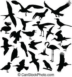 Pájaros siluetas
