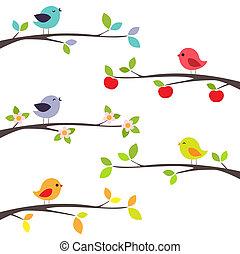 Pájaros sobre ramas