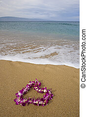 púrpura, lei, playa, orquídea