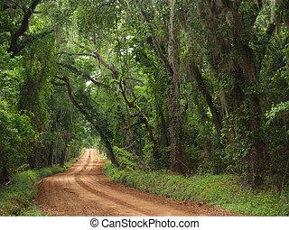 país, arcilla, camino rojo, canopied