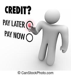 paga, later, -, credito, contra, elegir, dinero, ahora, préstamo