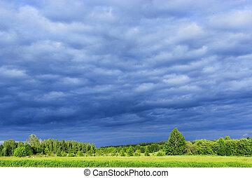 Paisaje con nubes de lluvia oscura bajo el bosque