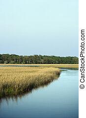 Paisaje costero Marsh.