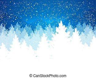 Paisaje de invierno nocturno