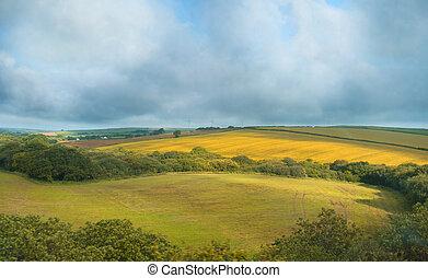 Paisaje de verano en Cornwall, Reino Unido