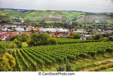 Paisaje estacional de Wurzburg, Bavaria