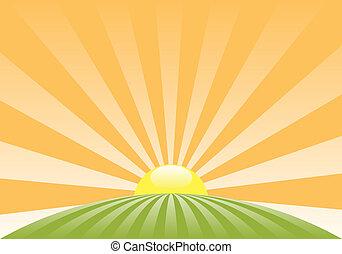 Paisaje rural abstracto vector con sol naciente