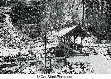 Paisaje rural en invierno. Puente sobre el río. Imagen de monocromo.
