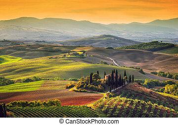 Paisaje toscano al amanecer. Casa de granja toscana, viñedos, colinas.