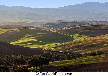 Paisaje toscano al amanecer. Casa de granja toscana, viñedos, colinas verdes.