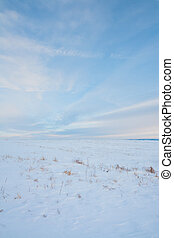 Paisajes de praderas de nieve