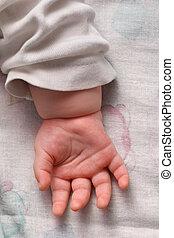 Palma de bebé
