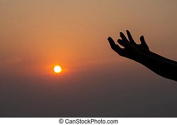 palma humana, abierto, arriba, worship., manos